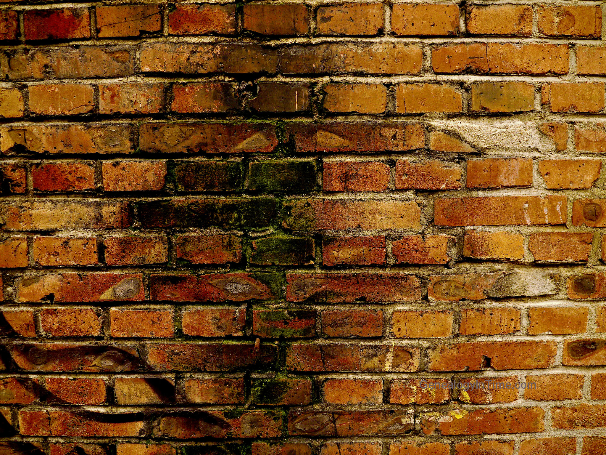 Image 41 - Old 1800s Factory Brick Wall