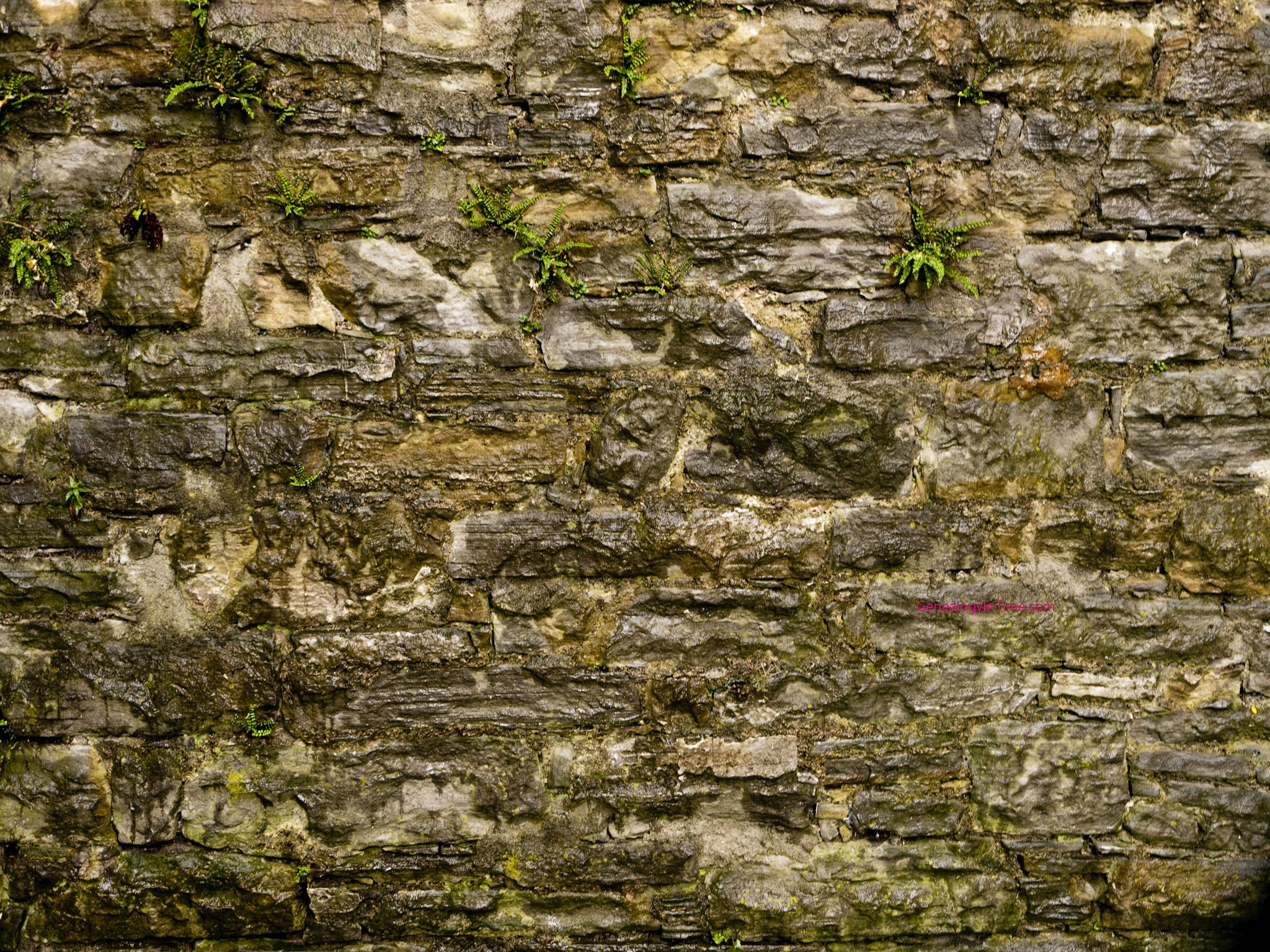 stone wall images page 5